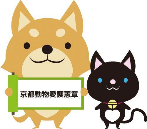 京都動物愛護センターの画像