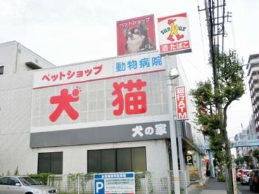ペットショップ 犬の家 ウィーアーワン 町田店の画像2