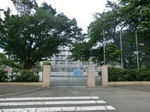 杉並区立馬橋小学校