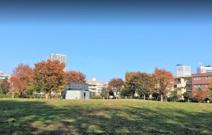 中村かしわ公園