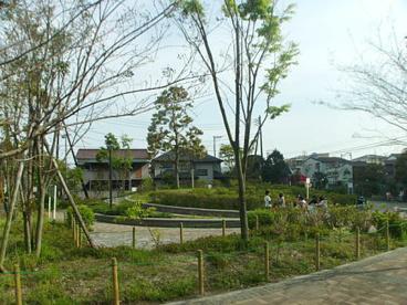 町田堀ふれあい公園の画像1