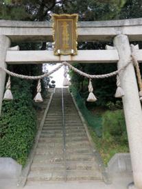 青龍神社の画像1