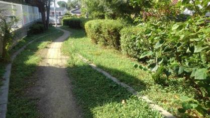 藤が丘緑地の画像1