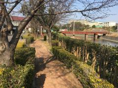鴨谷堀割緑地の画像1