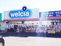 ウエルシア薬局八王子椚田店