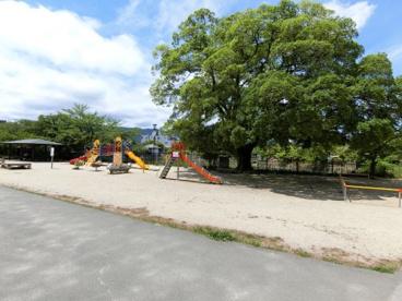 大中公園 (桜名所)の画像1