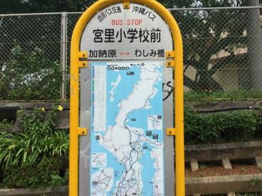 宮里小学校前の画像1