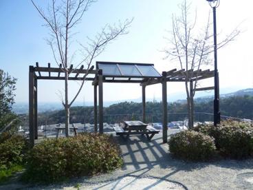 山手台北公園の画像3