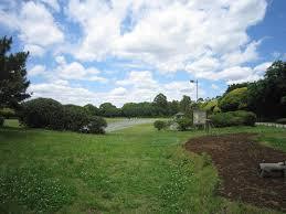 夢の島公園の画像1