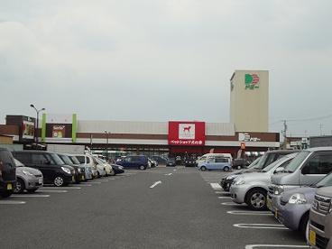 ドミー 新川店の画像1