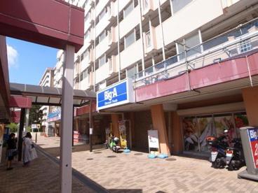 ビッグ・エー・横浜南神大寺団地店の画像1