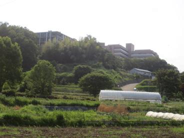 東京農業大学農学部 厚木キャンパスの画像1