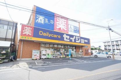 デイリーケアセイジョー美女木店の画像1