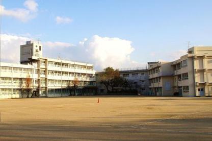 深井小学校の画像1