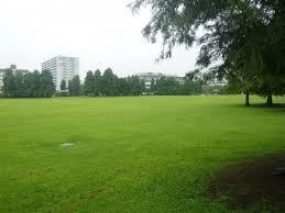 辰巳の森海浜公園少年広場の画像1