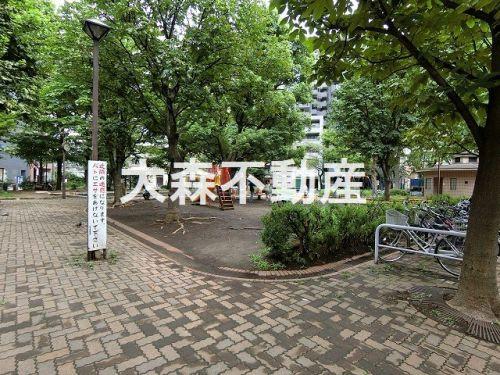 入新井公園の画像