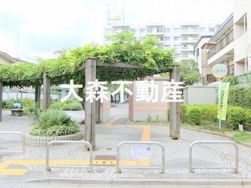 若竹公園の画像
