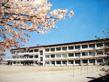 楠中学校の画像1