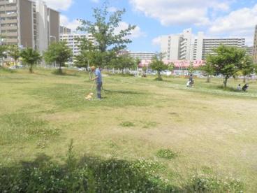 高見新家公園の画像1