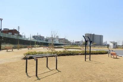 正蓮寺川公園の画像1