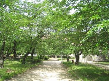 土佐公園の画像1