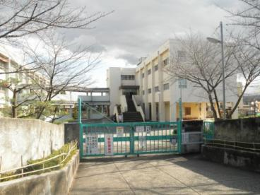 右京小学校の画像1