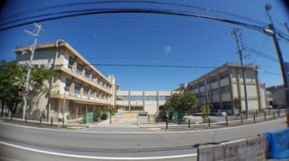 姫路市灘中学校の画像1