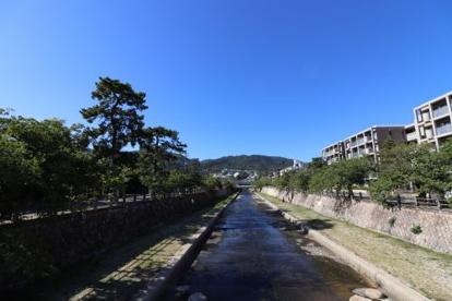 芦屋川の画像1
