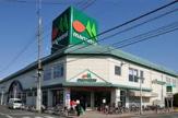 マルエツ 西新井店