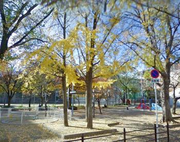 花乃井公園の画像1