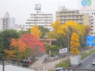 稲毛神社の画像1