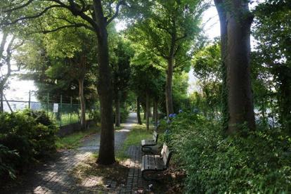平間緑道緑地の画像1