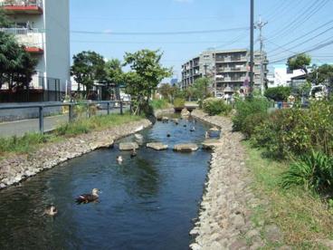 江川せせらぎ遊歩道 下小田中5丁目付近の画像1