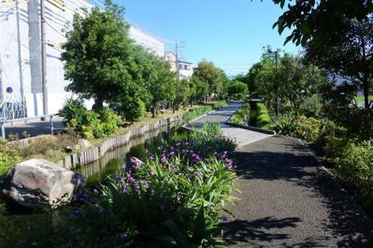 江川せせらぎ遊歩道 井田中ノ町付近の画像1
