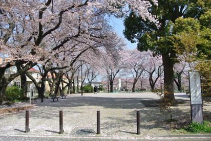 井田さくらが丘公園の画像1