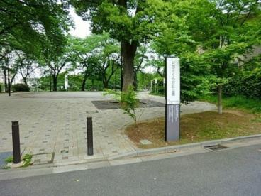 井田さくらが丘公園の画像2