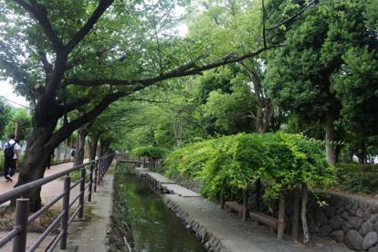 二ヶ領用水 木月住吉町付近の画像1