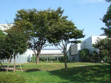国際交流センターの画像1