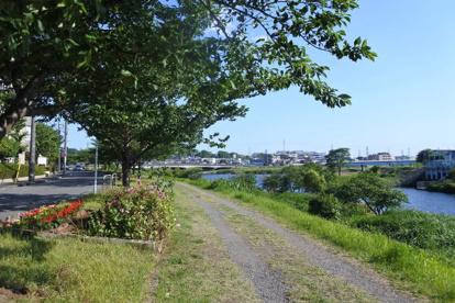 矢上川 南加瀬5丁目付近の画像1