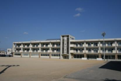 藤ノ木小学校の画像1