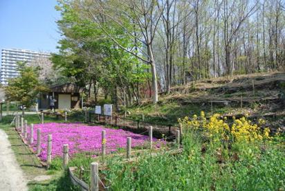 新川崎さいわいふるさと公園の画像1