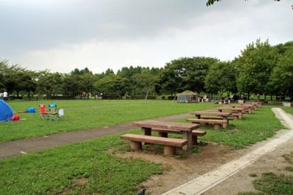 埼玉県営みさと公園の画像4