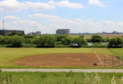 三郷市 江戸川河川敷野球場の画像1