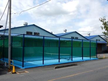 シードテニスクラブの画像2