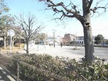 練馬区立早宮公園