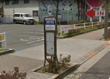 柏野小学校(バス停)の画像1