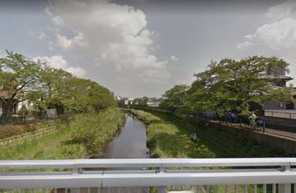 野川の画像1