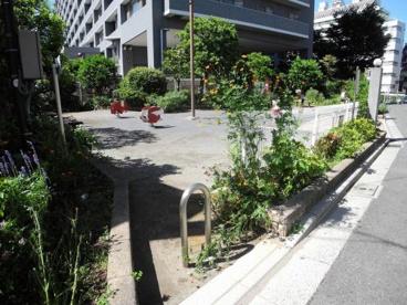新宿区立きたしん公園の画像1