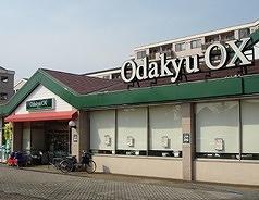 Odakyu OX 栗平店の画像2