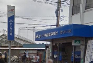 セレサ川崎農業協同組合 宿河原支店の画像2